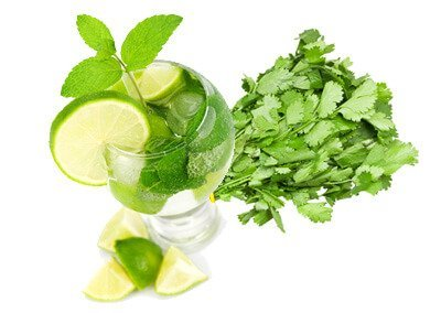 Sunstroke-Coriander & Mint Juice