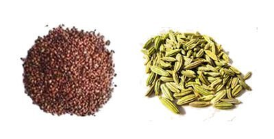 Sunstroke-Tulsi Seeds and Fennel Seeds